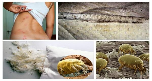 6 điều bạn tuyệt đối không nên làm mỗi sáng thức dậy - Ảnh 4.