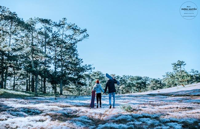 Cánh đồng tuyết đẹp đến ngỡ ngàng ở Đà Lạt - Ảnh 14.