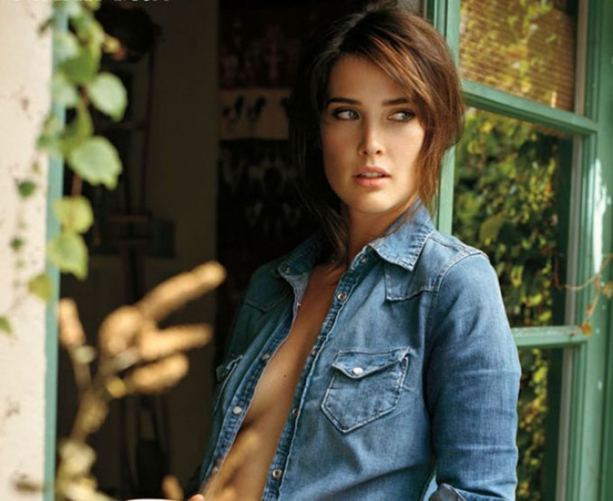 Cobie Smulders - Hành trình từ