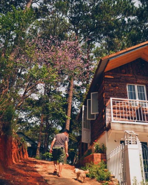 Thêm một căn nhà cực xinh xắn chứng minh Đà Lạt đúng là thiên đường homestay! - Ảnh 2.