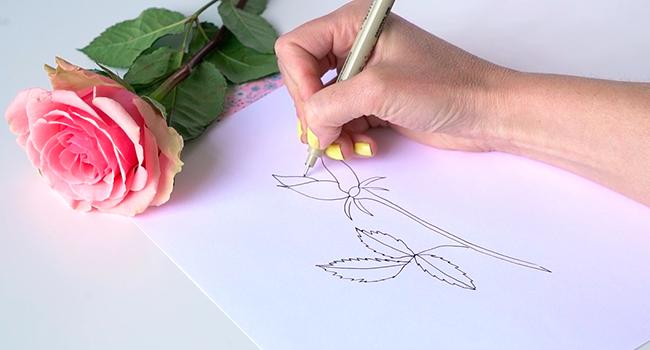 Học vẽ 3 kiểu hoa dễ như đùa mà vẫn đẹp - Ảnh 14.
