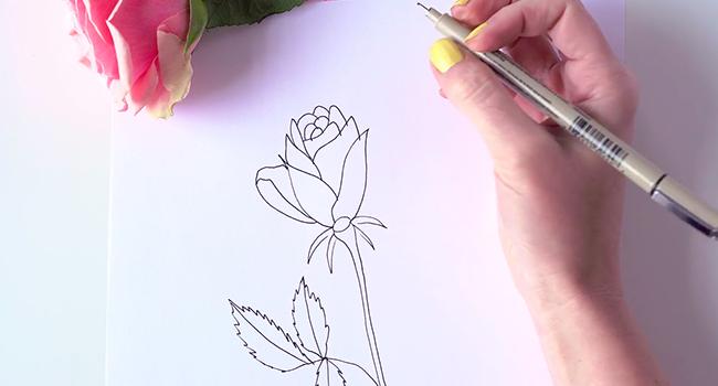 Học vẽ 3 kiểu hoa dễ như đùa mà vẫn đẹp - Ảnh 15.