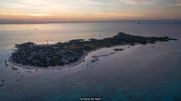 Nhờ có cá mập, đảo ngọc du lịch tại Philippines mới hồi sinh thần kì đến vậy - Ảnh 3.