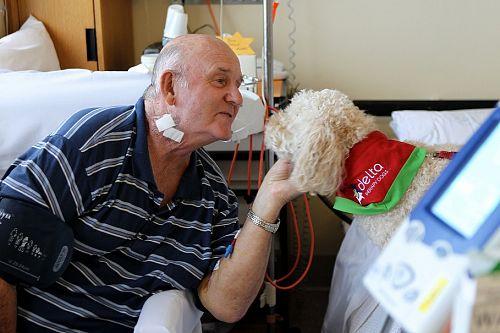 Thú cưng giúp bệnh nhân phục hồi nhanh hơn tới 30% - Ảnh 3.
