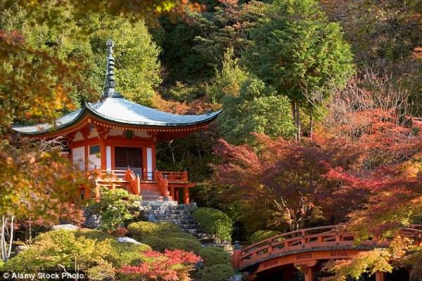 Những điều tuyệt vời khiến ai cũng ao ước được một lần ghé thăm Nhật Bản - ảnh 5