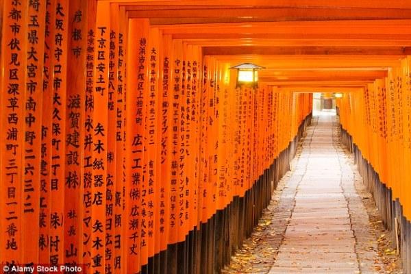 Những điều tuyệt vời khiến ai cũng ao ước được một lần ghé thăm Nhật Bản - ảnh 6