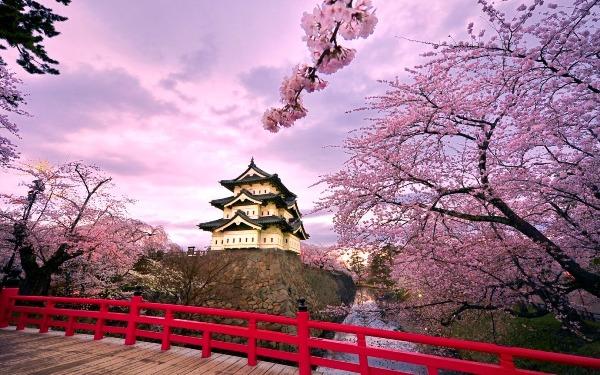 Những điều tuyệt vời khiến ai cũng ao ước được một lần ghé thăm Nhật Bản - ảnh 7