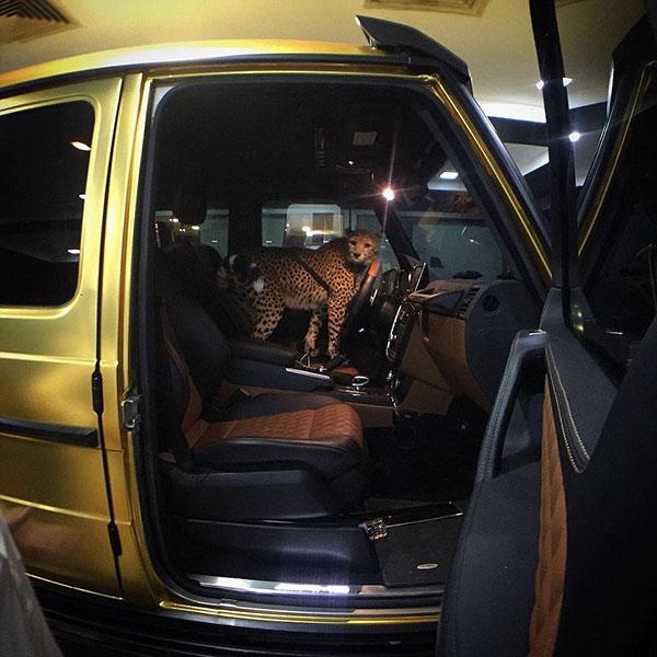 Cuộc sống hào nhoáng của đại gia Ả Rập sau màn khoe 4 siêu xe mạ vàng tại London - Ảnh 4.