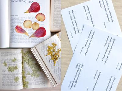 Ai hay đọc sách thì đừng bỏ qua mẫu bookmark cực đẹp từ hoa khô này - Ảnh 1.
