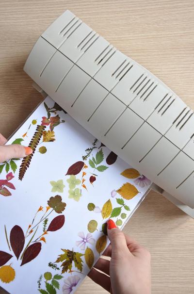 Ai hay đọc sách thì đừng bỏ qua mẫu bookmark cực đẹp từ hoa khô này - Ảnh 5.