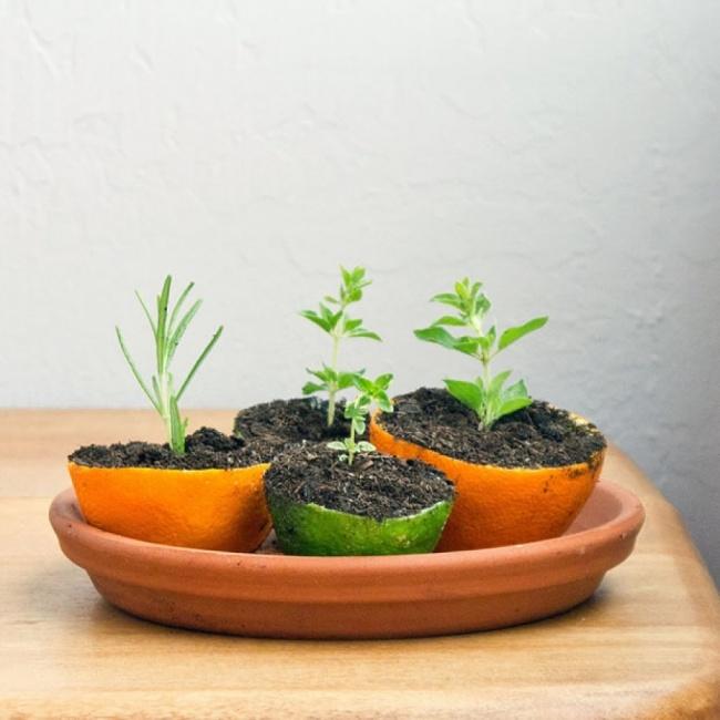 8 lý do cho bạn thấy chanh là loại quả hữu ích nhất trên thế giới - Ảnh 8.
