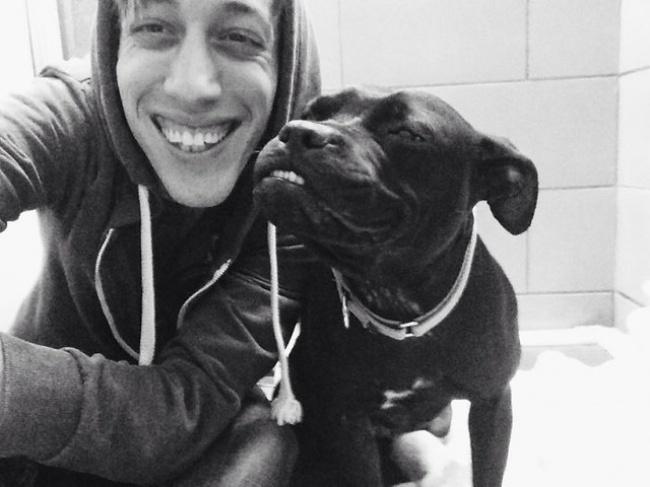 Nếu đang buồn, ngắm nụ cười của 19 em chó này sẽ quên hết ưu phiền - Ảnh 10.