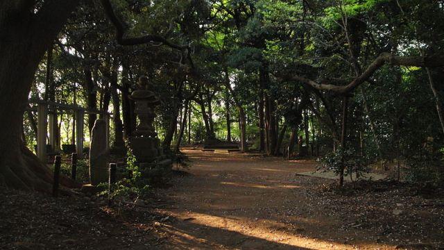 Tới Nhật Bản mùa Halloween, đừng dại dột mà ghé qua 10 địa điểm rùng rợn này - Ảnh 2.
