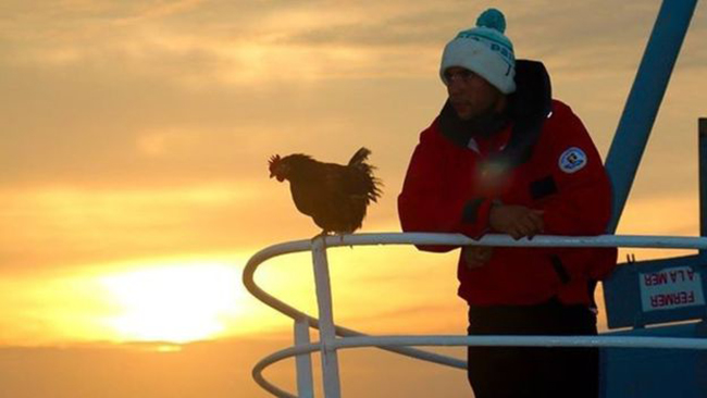 Nàng gà mái nắm tay trai đẹp đi khắp thế gian - Ảnh 8.