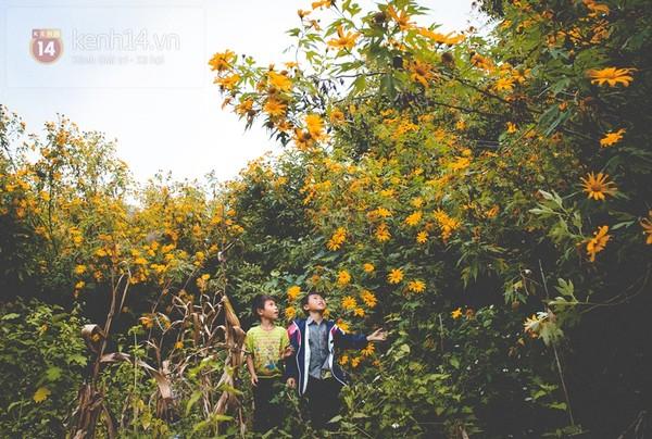 Tháng 11 đến rồi, nhất định phải đi Tây Bắc để hưởng cái lạnh và ngắm 3 loài hoa này - Ảnh 17.