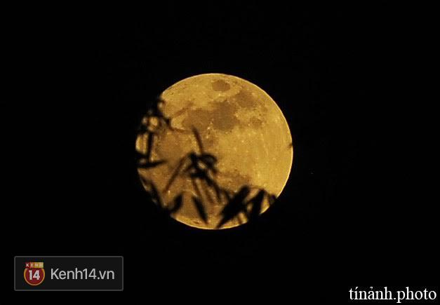 Mãn nhãn với chùm ảnh siêu trăng thế kỷ trên khắp Việt Nam - Ảnh 21.