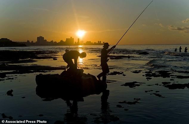 Trào lưu câu cá bằng bao cao su ở Cuba - Ảnh 11.