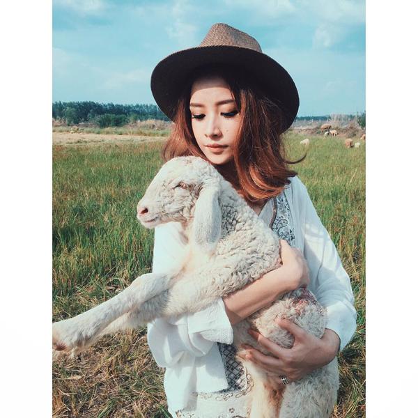 Ở Việt Nam có 3 cánh đồng nuôi cừu, tới đây ảnh có chụp kiểu gì cũng xinh! - Ảnh 11.