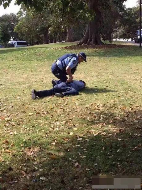 Cảnh sát bắt giữ 2 du khách tè bậy ở Vườn bách thảo Hoàng gia Sydney - Ảnh 2.