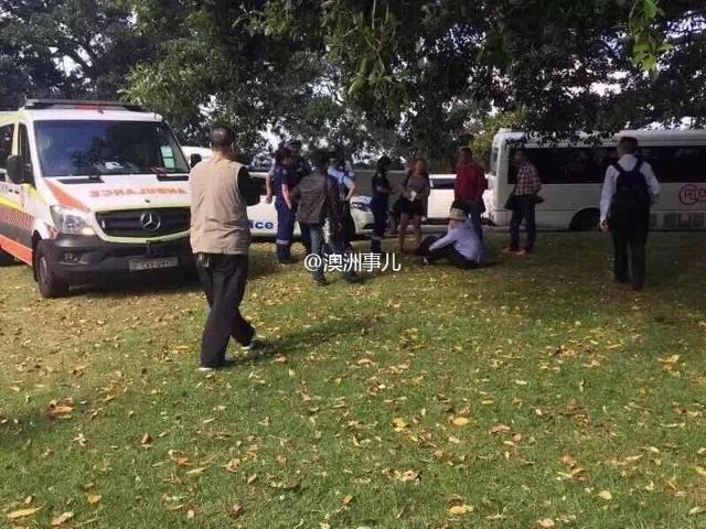 Cảnh sát bắt giữ 2 du khách tè bậy ở Vườn bách thảo Hoàng gia Sydney - Ảnh 3.