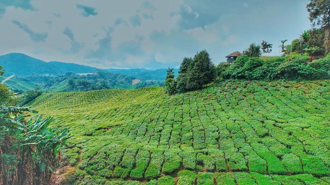 Những bộ ảnh du lịch của giới trẻ Việt khiến bạn vừa ghen tị vừa ao ước giá mình cũng được ở đó như họ - Ảnh 29.