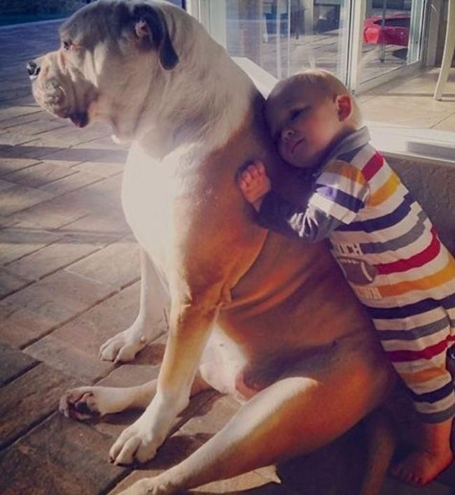 22 tình bạn đáng ngưỡng mộ của trẻ con và thú cưng - Ảnh 1.