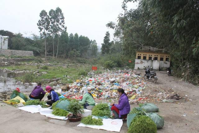 Người dân Tam Đảo viết tâm thư đề nghị dân phượt ngừng trộm rau và vứt rác bừa bãi - Ảnh 3.