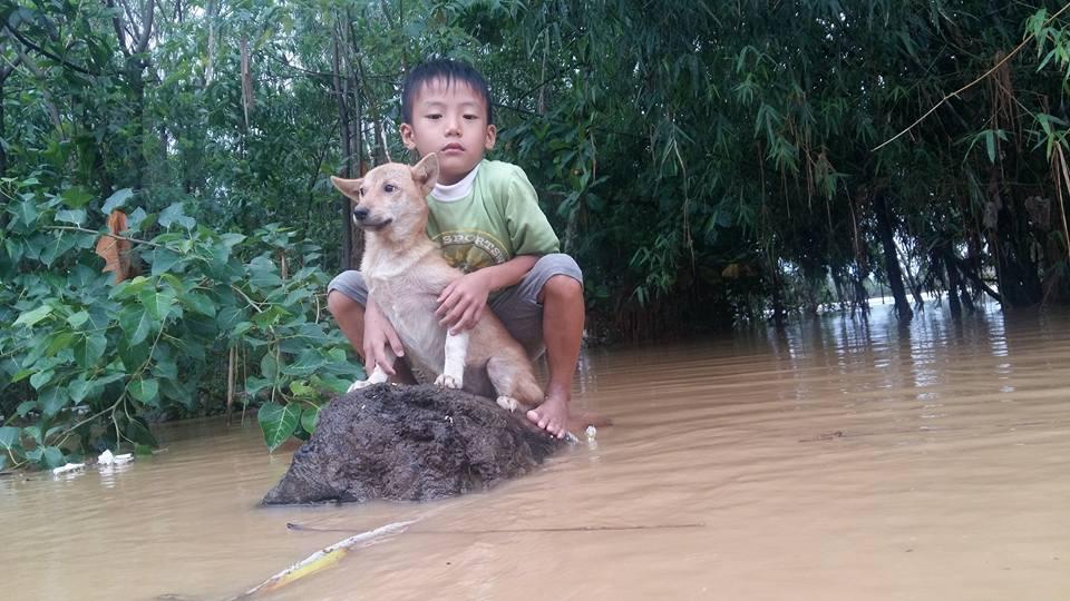 Cậu bé 6 tuổi bật khóc vì bơi ra dòng nước lũ cứu chú chó nhỏ nhưng không thể vào bờ
