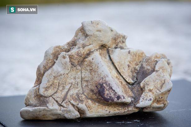 Quăng lưới đánh cá, người ngư dân may mắn vớ được báu vật nặng 60kg, trị giá 57 tỉ đồng - Ảnh 2.
