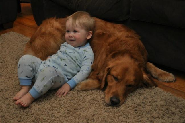 22 tình bạn đáng ngưỡng mộ của trẻ con và thú cưng - Ảnh 10.