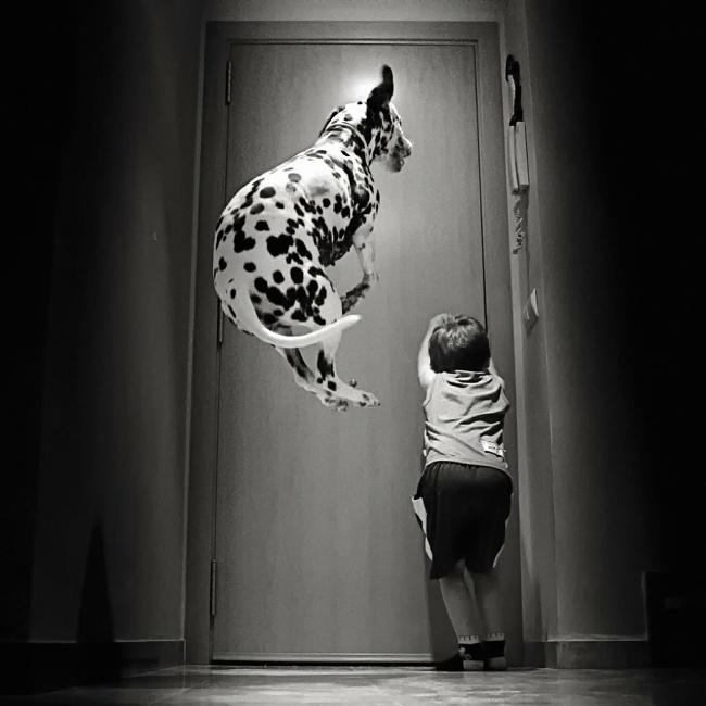 22 tình bạn đáng ngưỡng mộ của trẻ con và thú cưng - Ảnh 14.