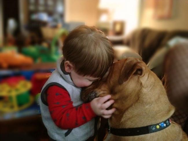 22 tình bạn đáng ngưỡng mộ của trẻ con và thú cưng - Ảnh 18.