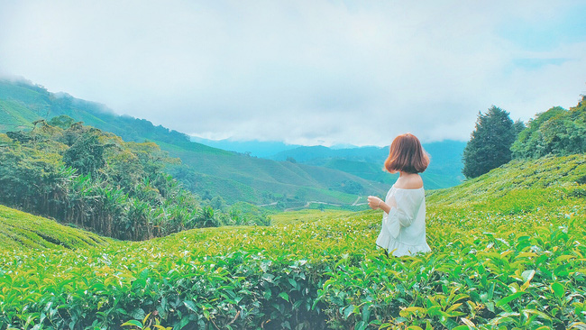 Những bộ ảnh du lịch của giới trẻ Việt khiến bạn vừa ghen tị vừa ao ước giá mình cũng được ở đó - giống - Ảnh 31.