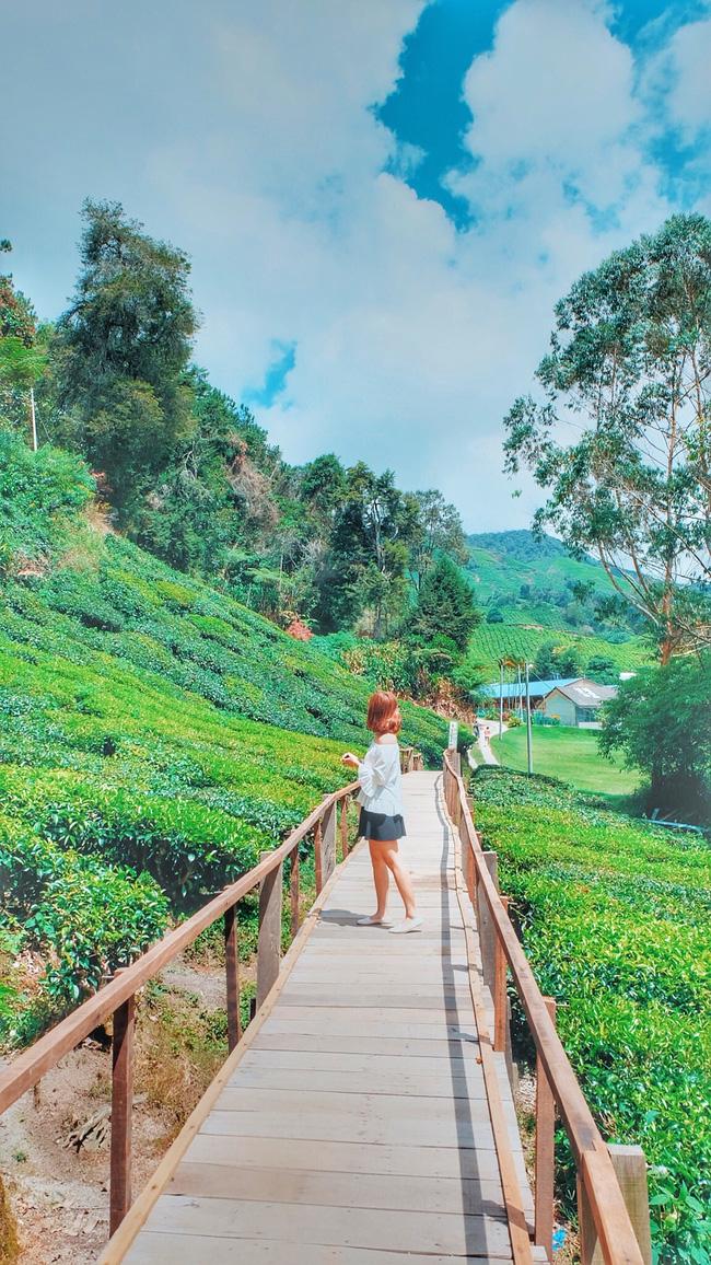 Những bộ ảnh du lịch của giới trẻ Việt khiến bạn vừa ghen tị vừa ao ước giá mình cũng được ở đó như họ - Ảnh 33.