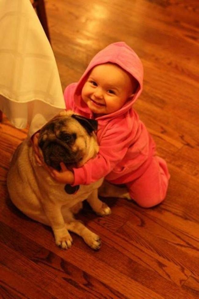22 tình bạn đáng ngưỡng mộ của trẻ con và thú cưng - Ảnh 6.