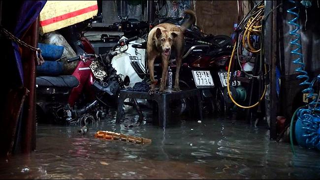 Những hình ảnh khó quên với người Sài Gòn trong trận mưa lịch sử ngày 26/9 - Ảnh 16.