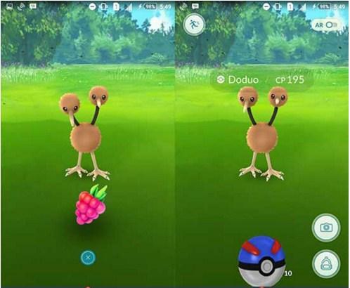 Razz Berry dùng để dụ ngọt thì Pokemon sẽ dễ bắt hơn.