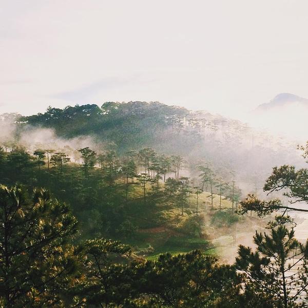 Những nơi chụp ảnh siêu đẹp ở Đà Lạt trong MV của Quang Vinh mà bạn nhất định phải ghé! - Ảnh 15.