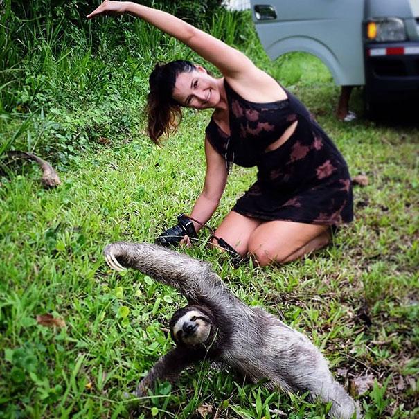 16 bé động vật biết tập yoga dẻo hơn cả bạn - Ảnh 3.