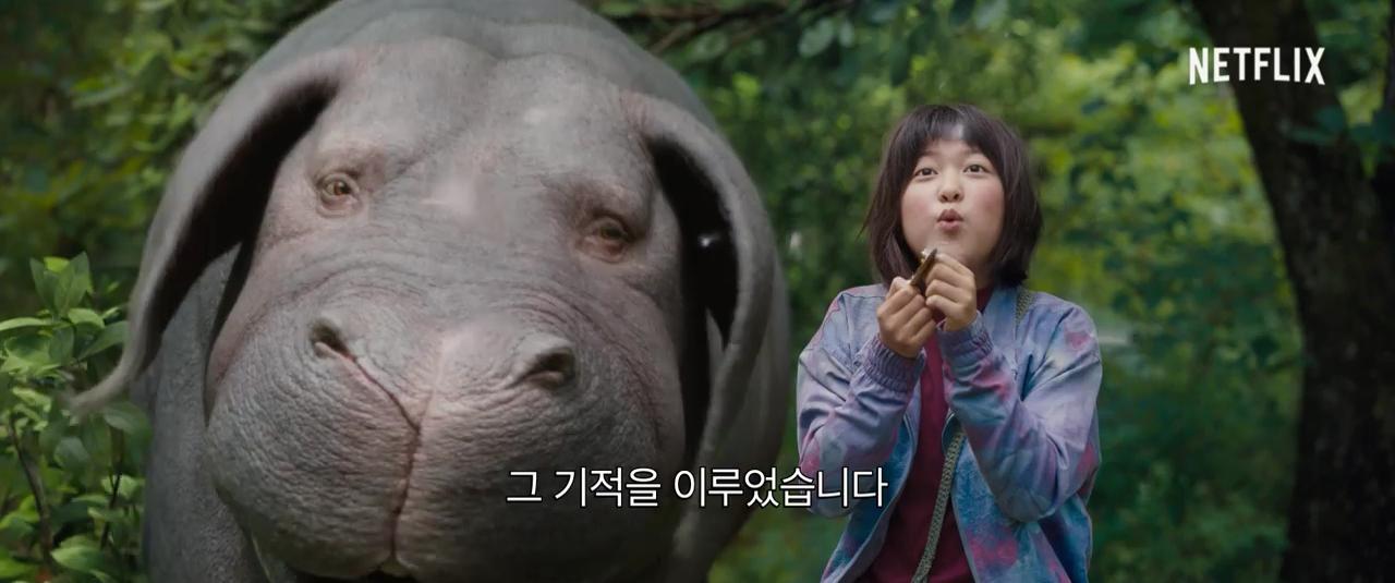 Kết quả hình ảnh cho Siêu Lợn Okja Okja