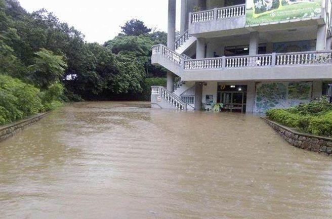 Người dân Đài Loan chật vật đối mặt với ngập úng khắp nơi bởi trận mưa lớn kỷ lục trong 17 năm qua 5