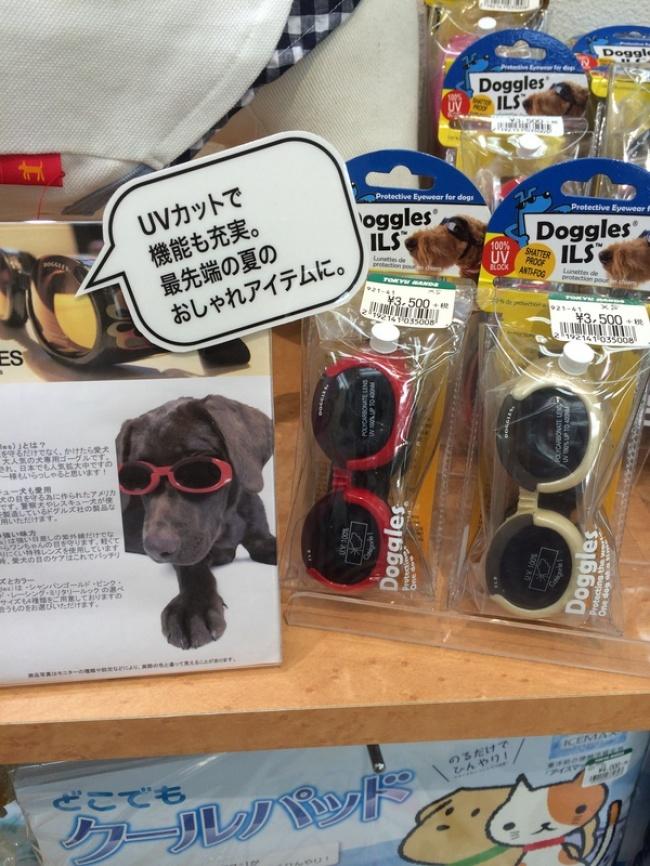8 phát minh công nghệ cực dị nhưng hữu ích mà bạn chỉ có thể tìm thấy ở Nhật Bản - Ảnh 3.