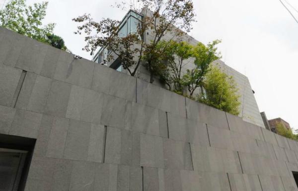 Vừa thổ lộ muốn lập gia đình, Song Joong Ki đã tậu ngay biệt thự hơn 200 tỉ - Ảnh 3.