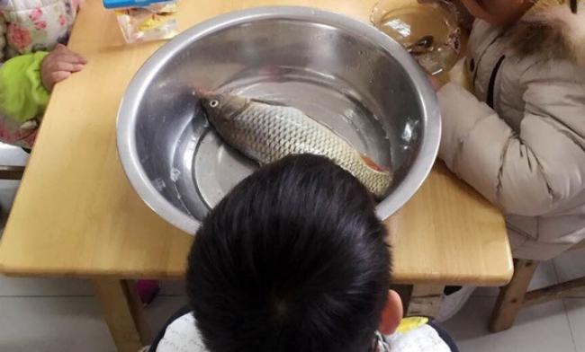 Sau cô bé Vô Diện, đến lượt con cá khác biệt của cậu bé này khiến người ta cười lăn lộn - Ảnh 3.