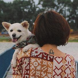 """""""Chuyến đi đầu tiên trong đời của một chú chó"""" - hành trình đáng yêu khiến bạn chỉ muốn dắt cún đi du lịch ngay và luôn! - Ảnh 2."""