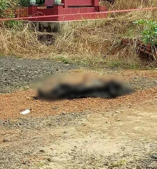 Sát hại vợ bằng búa rồi chở xác ra nghĩa trang đốt phi tang - ảnh 1