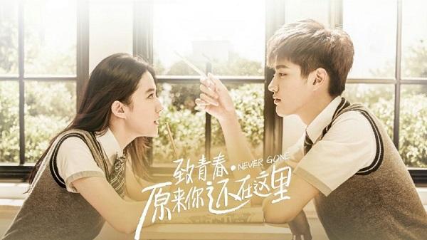Bàng hoàng khi phim của Lưu Diệc Phi chỉ bán được 5 vé tại Hàn Quốc - Ảnh 3.
