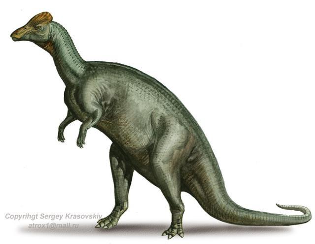 Hỏi khó: một quả trứng khủng long mất bao lâu để nở? Cuối cùng chúng ta cũng có câu trả lời - ảnh 4