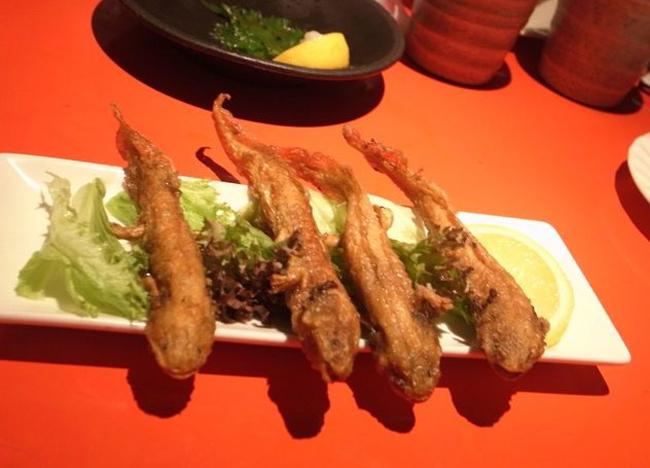 Nhà hàng kinh dị nổi tiếng với món thạch sùng tẩm bột, bọ rán hay caramel sâu - Ảnh 4.