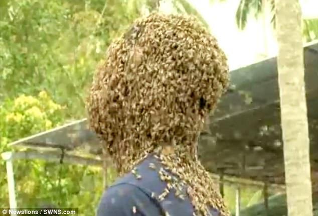 Để 60.000 con ong bâu kín mặt, chàng trai vẫn thản nhiên nói chuyện đọc sách - Ảnh 3